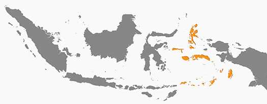 map-indonesia-moluccas