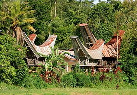 Discover south-Sulawesi