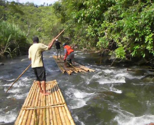 Insight Kalimantan tours